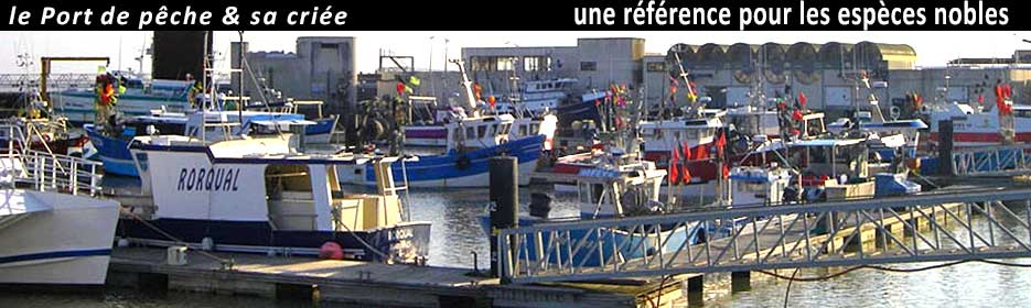port royan plaisance, port royan peche