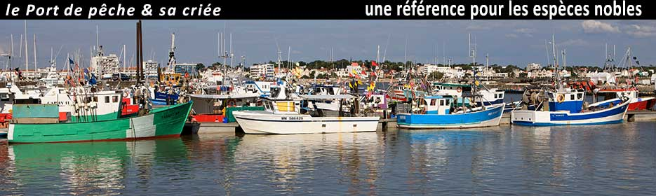port de peche royan